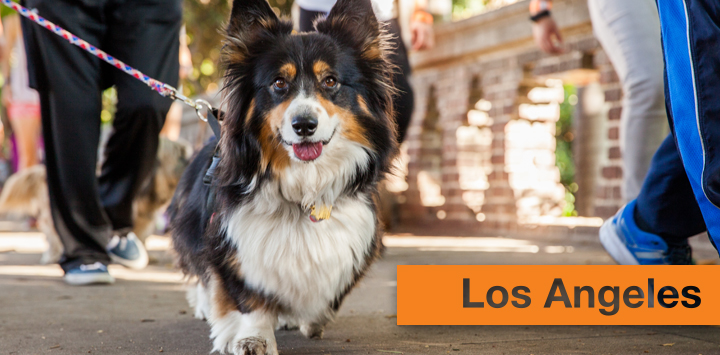 Event Cities - Best Friends Animal Society
