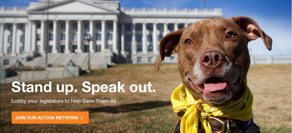 Stand Up. Speak Out. Lobby your Legislators to help Save Them All. Join our Action Network