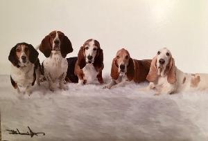 Pack of Bassets!