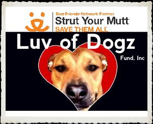 Team Luv of Dogz Fund